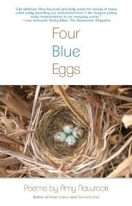 Four_Blue_eggs_cover