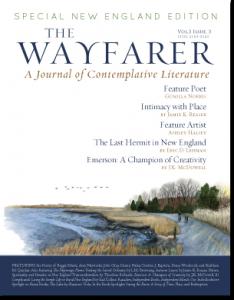 The-Wayfarer_Vol-3_Iss_3_cov_sm-234x300