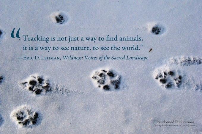 erics wildness quote
