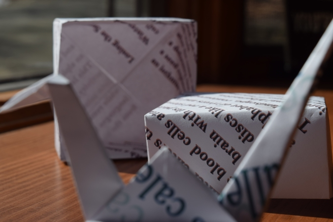 017 origami box close up w crane.JPG